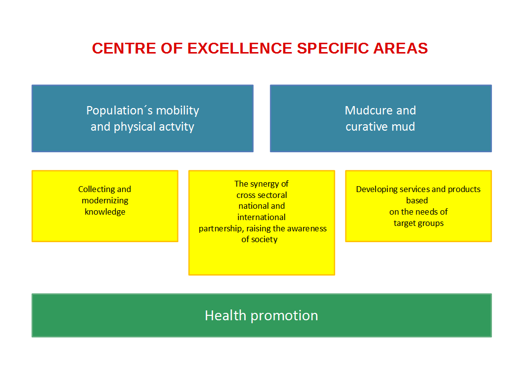 CENTRE OF EXCELLENCE SPECIFIC AREAS